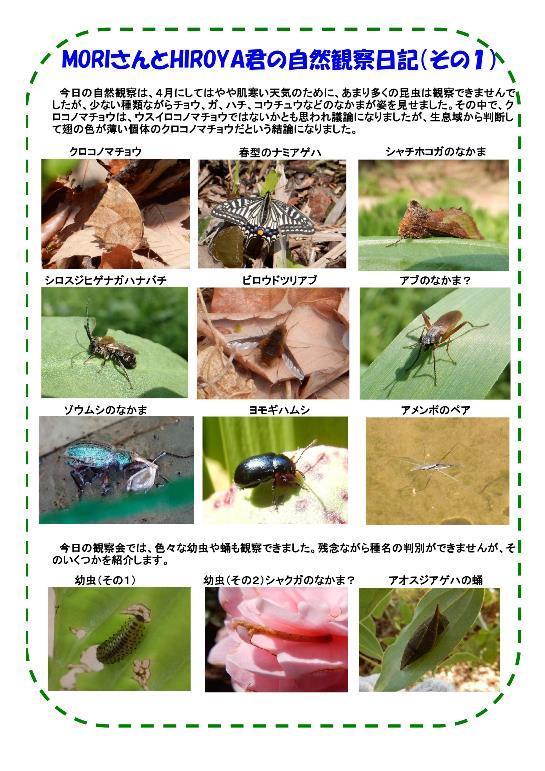 180407 里山整備活動報告a-改-002-resize.jpg