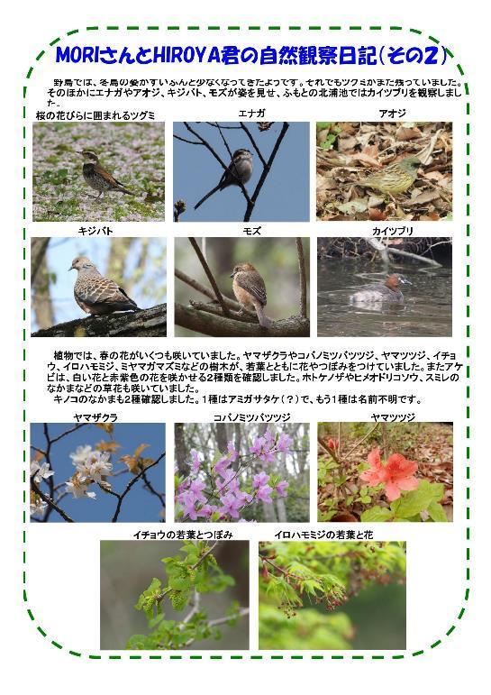 180407 里山整備活動報告a-改-003-resize.jpg