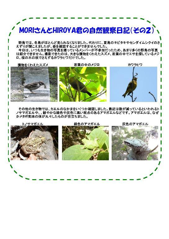 180512 里山整備活動報告(13008)-003-resize.jpg