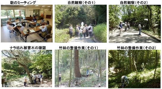 180714 里山整備活動報告-001-resize.jpg
