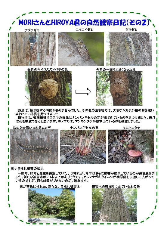 180804 里山整備活動報告f-003-resize.jpg