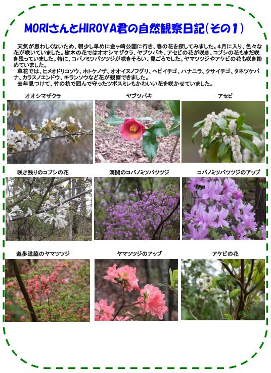 20130416_nature_img_02.jpg