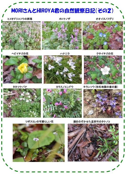 20130416_nature_img_03.jpg