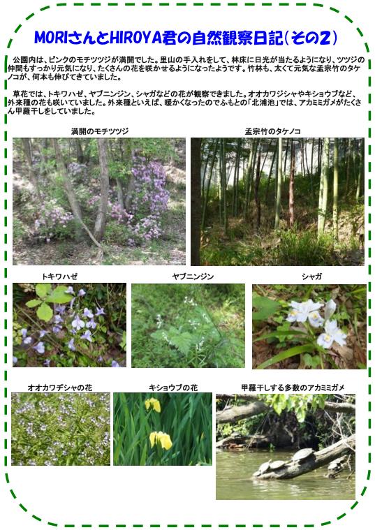 20130506_nature_img_03.jpg