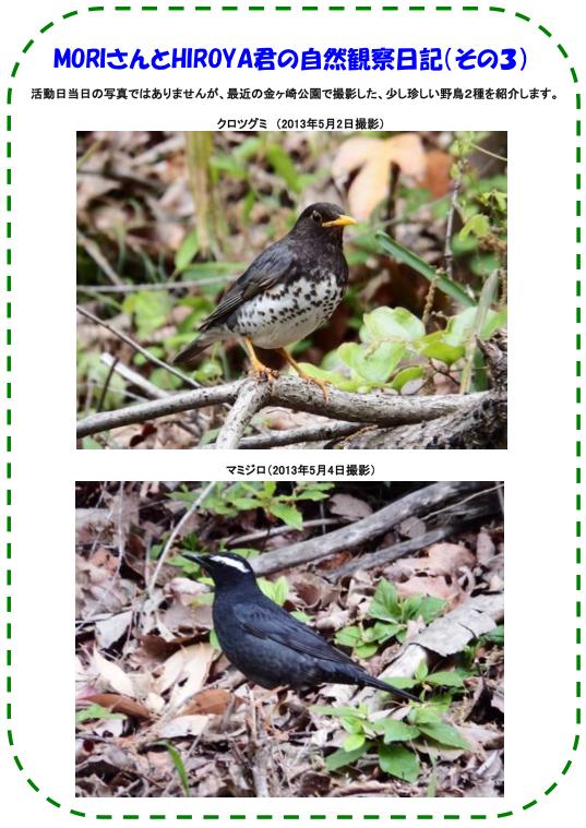 20130506_nature_img_04.jpg