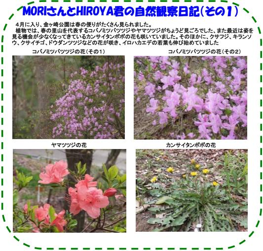 20140405_nature_03.png