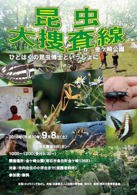 昆虫大捜査線チラシ-001-resize.jpg